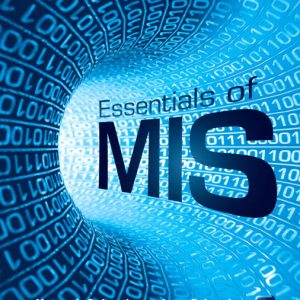 Solution Manual (Complete Download) for   Essentials of MIS
