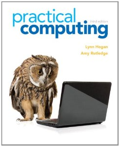 Test Bank (Complete Download) for  Practical Computing