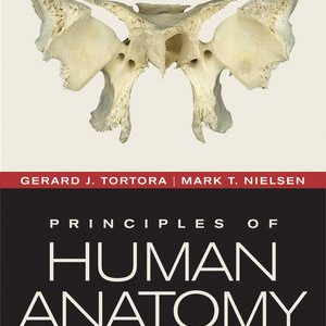 Test Bank (Complete Download) for   Principles of Human Anatomy