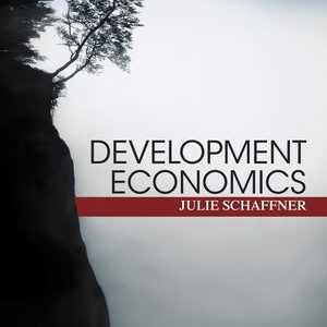 Solution Manual (Complete Download) for   Development Economics: Theory