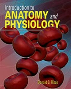 Test Bank (Complete Download) for   Introduction to Anatomy and Physiology