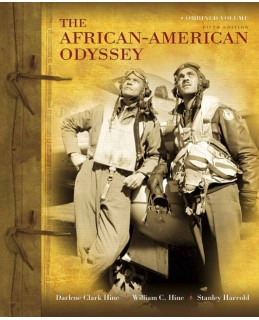 the african american odyssey essay Free essay: the african-american odyssey the promise of reconstruction, 1865-1868 the emancipation of the african slave who was now disconnected from their.