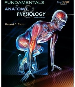 Test Bank (Complete Download) for  Fundamentals of Anatomy and Physiology