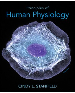 Test Bank (Complete Download) for  Principles of Human Physiology
