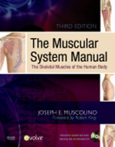 Test Bank (Complete Download) for  The Muscular System Manual The Skeletal Muscles of the Human Body