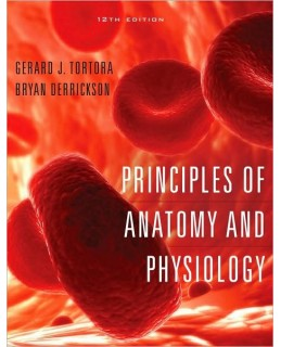 Test Bank (Complete Download) for  Principles of Anatomy and Physiology