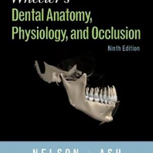 Test Bank (Complete Download) for Wheeler's Dental Anatomy